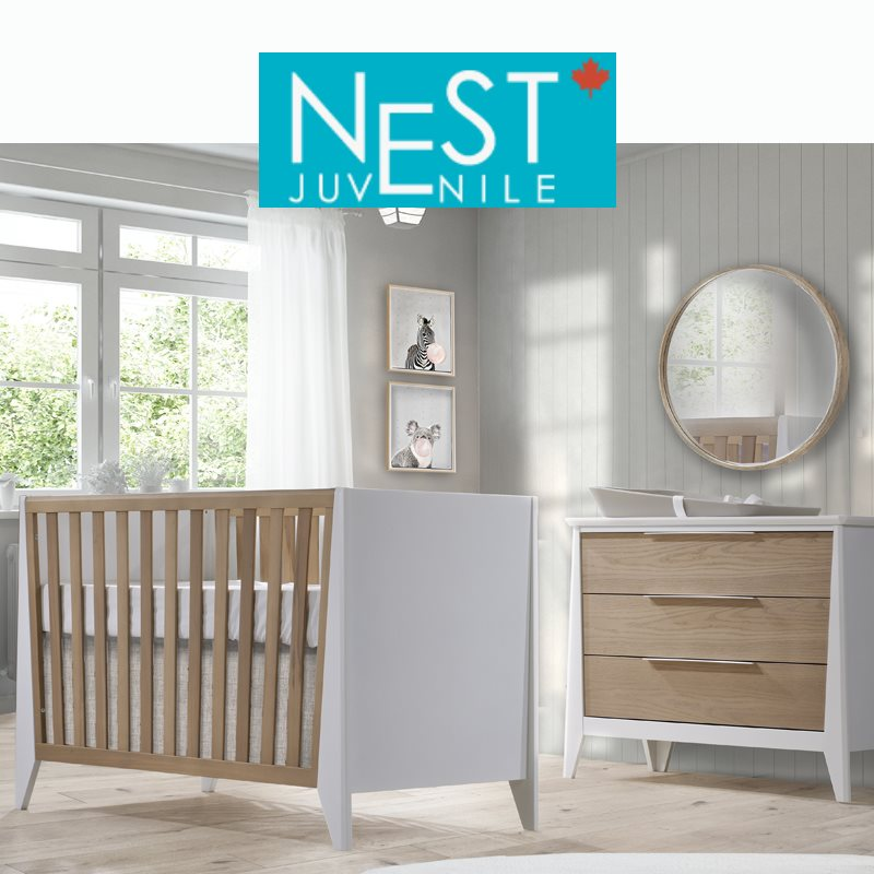 Collection Nest juvénile